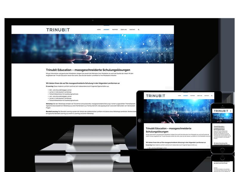 Webseite für Trinubit GmbH