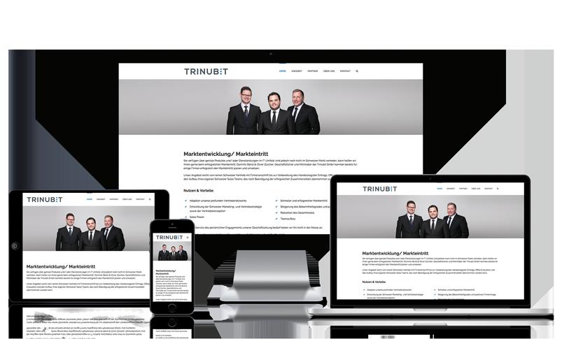 Wordpress Webseite für Trinubit GmbH