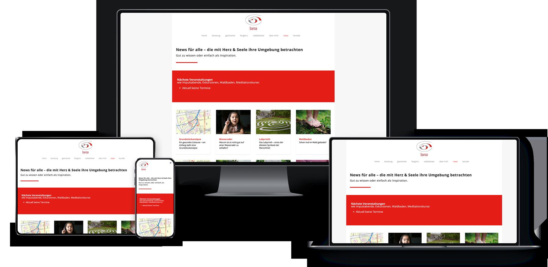 Webseite für Baroa